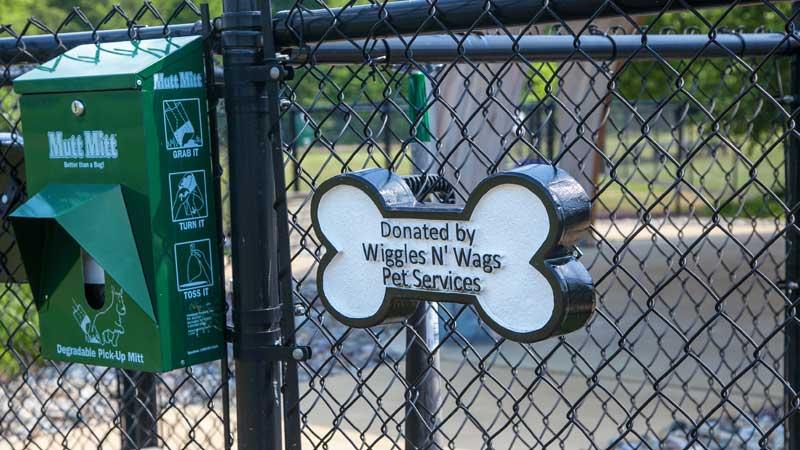 dog sponsorships